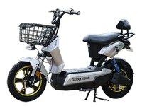 Xe điện Bridgestone Execity