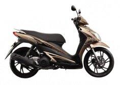 Xe máy Suzuki Hayate 125 SS
