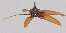 Quạt trần Fanimation Windpointe AB-B5340WA