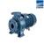 Máy bơm nước ly tâm Ebara 3D 40-200/5.5 - trục ngang, 7.5HP