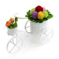 Xe đạp giỏ hoa cẩm chướng PeepVN