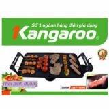 Bếp nướng điện Kangaroo KG198N