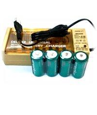 Bo sac pin dai D Super BC2500 (4-ENERPLUS-D9000mAh), kem san 4 pin sac dai D EnerPlus D9000mAh 1.2v