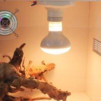 Bóng đèn sưởi ngày dành cho thú cưng- bò sát