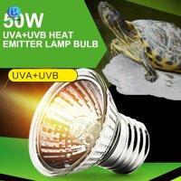Bóng đèn sưởi UVA UVB cho thú cưng bò sát rùa cảnh iguana 50w