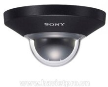 Camera Dome IP SONY SNC-DH110T