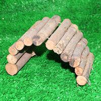 Cầu thang gỗ cong size nhỏ hamster