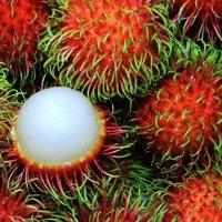 Chôm chôm thái hữu cơ Thiên Nhiên Organic Farm 1kg