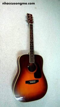 Dan Guitar acoustic MORRIS MD- 512