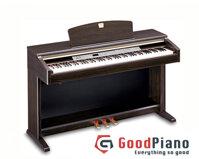 Dan Piano Dien YAMAHA CLP-120