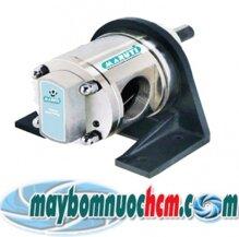 Đầu bơm bánh răng bằng inox Maruti MESX-125 - 2HP
