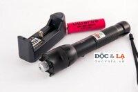 Den Laser Pointer XinWei XW-006