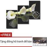 Đồng hồ tranh hoa Loa kèn trắng Dyvina 3T3050-5