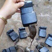 Free (Buôn/sỉ) KẸP BẪY CHUỘT THÔNG MINH- kẹp chuột