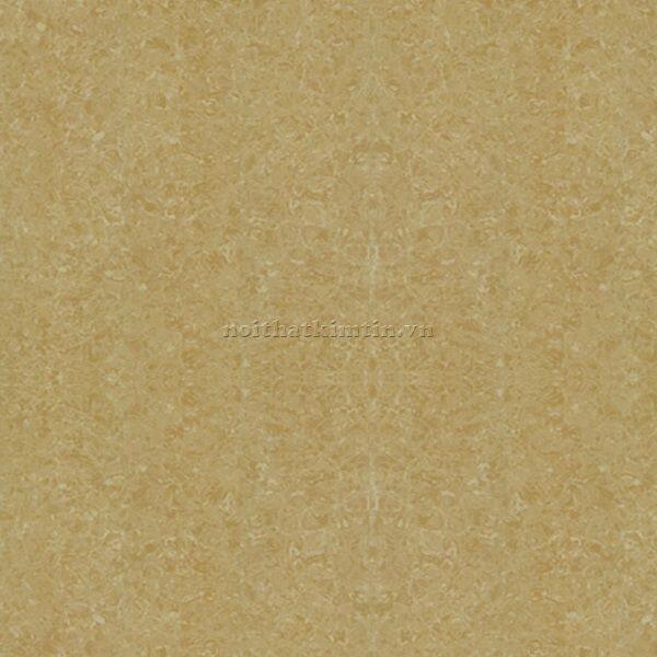 Gạch lát Taicera - P67771N (60x60)