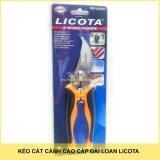 Kéo cắt cành Licota TGP-00387 8inch