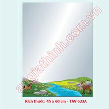 Gương Bỉ TAV 622A (45x60)