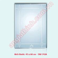 Gương bỉ TAV 742A (45x60)