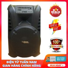 Loa bluetooth Karaoke di động Caliana TN15 (Loa 40cm)