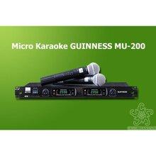 Micro Guinness MU-200