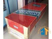 Nệm Bông Ép Dupong 160x200x10cm