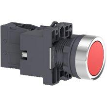 Nút nhấn Schneider XA2EW34B1
