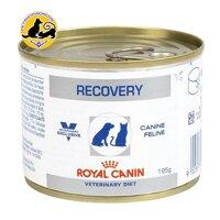 Royal Canin Recovery Pate Pháp - Thức ăn dành cho chó mèo giúp phục hồi sức khỏe (195g)