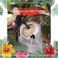 S rẻ SET 10 Túi bọc trái cây 30x30,2cm bằng vải không dệt chuyên dùng bọc Xoài Cát Hòa Lộc, Xoài Đài Loan, Bưởi Năm roi