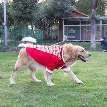 Áo khoác đôi Husky