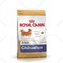 Thức ăn cho chó Royal Canin Chihuahua Adult - 500g, dành riêng cho Chihuahua trên 8 tháng