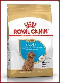 Thức ăn Hạt Cao Cấp cho CHÓ POODLE. Royal Canin Poodle Puppy. Sản phẩm của Pháp . 500g/ túi.
