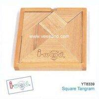 Tro choi tangram tri uan Benho YT8339