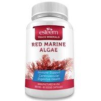 Vien Uong Tao Do Esteem Red Marine Algae 60 Vien
