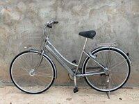 Xe đạp cào cào Nhật Albert (Nhôm)