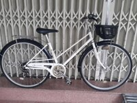 Xe đạp cào cào Nhật