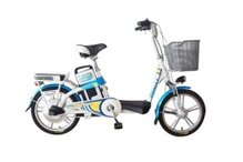 Xe đạp điện Giant 325R