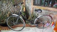Xe đạp mini Nhật (gấp )
